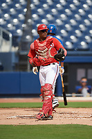 GCL Nationals catcher Israel Pineda (20) during the first game of a doubleheader against the GCL Mets on July 22, 2017 at The Ballpark of the Palm Beaches in Palm Beach, Florida.  GCL Mets defeated the GCL Nationals 1-0 in a seven inning game that originally started on July 17th.  (Mike Janes/Four Seam Images)