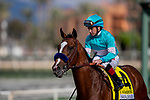 MAR 07: Authentic and Drayden Van Dyke wins the San Felipe Stakes at Santa Anita Park in Arcadia, California on March 7, 2020. Evers/Eclipse Sportswire/CSM