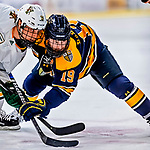 26 January 2019: Merrimack College Warrior Forward Michael Babcock, a Senior from Northville, MI, takes a first period face-off against University of Vermont Catamount Bryce Misley at Gutterson Fieldhouse in Burlington, Vermont. The Warriors fell to the Catamounts 4-3 in overtime after tying up the game in the dyeing seconds of the third period of their America East conference game. Mandatory Credit: Ed Wolfstein Photo *** RAW (NEF) Image File Available ***