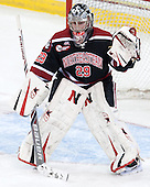 Chloe Desjardins (NU - 29) - The Boston College Eagles defeated the Northeastern University Huskies 3-0 on Tuesday, February 11, 2014, to win the 2014 Beanpot championship at Kelley Rink in Conte Forum in Chestnut Hill, Massachusetts.