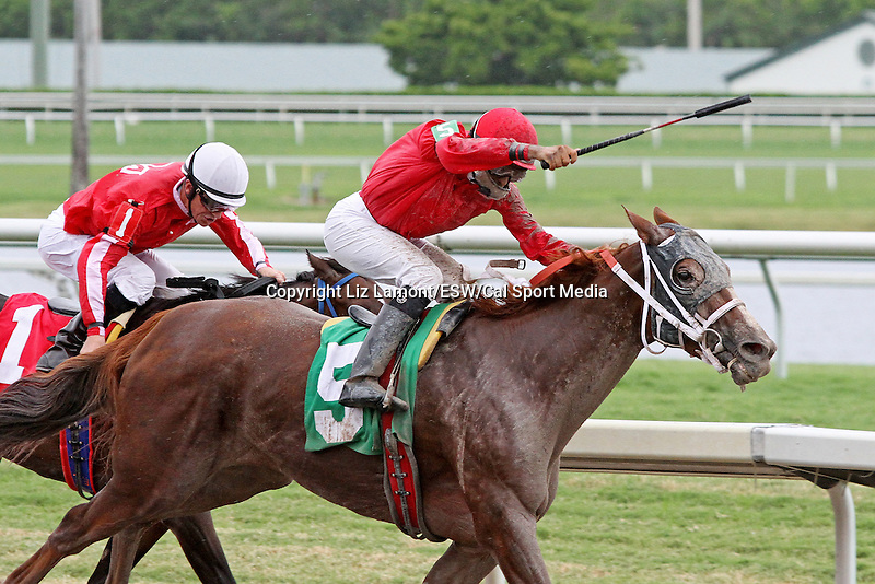 September 06, 2014:  Scenes from Gulfstream Park.  #5 Sweet Irish Rose (KY) with jockey Pedro Monterrey Jr on board wins R6 at Gulfstream Park in Hallandale Beach FL. Liz Lamont/ESW/CSM