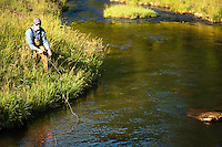 A fly-fisherman casts a line on a spring creek near Viroqua, Wisconsin.