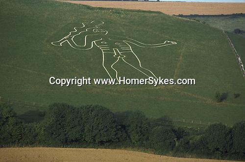 Cerne Abbas Giant Hill Carving, Cerne Abbas, Dorset. England.