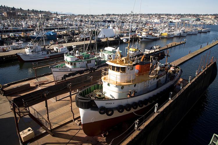 Seattle, Fishermen's Terminal, Port of Seattle, Lake Washington Ship Canal, Boyer Towing's tug Brenda H, up on the ways for repair, Pacific Northwest, Washington State, Puget Sound,