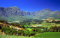 South Africa, near Cape Town, Winelands Stellenbosch: wine growing estate Thelema