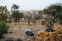 MALI,  Bandiagara, Dogonland, habitat of the ethnic group Dogon, Dogon village with Baobab trees at falaise rock formation