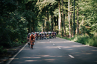 escaping Brussels via the forest<br /> <br /> 98th Brussels Cycling Classic 2018<br /> One Day Race:  Brussels > Brussels (201km)