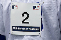 30 April 2008: Illustration shot during the first of seven 2008 MLB European Academy Try-out Sessions throughout Europe, at Stade Kandy Nelson Ball Park, in Toulouse, France. Try-out sessions are run by members of the Major League Baseball Scouting Bureau with assistance from MLBI staff.
