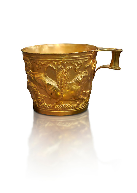 Vapheio type Mycenaean gold cup depicting a wild bull hunt side D, Vapheio Tholos Tomb, Lakonia, Greece. National Archaeological Museum of Athens.  White background.<br /> <br />  Two masterpieces of Creto - Mycenaean gold metalwork were excavated from a tholos tomb near Lakonia in Sparta in 1988. Made in the 15th century BC, the gold cups are heavily influenced by the Minoan style that was predominant in the Agean at the time. The bull hunt was popular with  Mycenaean  and Minoan artists and symolised power and fertility. The distinctive shape of the cup is kown as 'Vapheio type'.