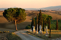 Gravel road through agricultural region of San Quirico d'Orcia at sunset Tuscany, Italy