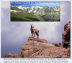 Mastering Nature Photography John leads private, photo tours throughout Colorado, including Denver and Boulder.