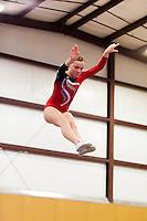 Basel's Gymnastics 2013 State Meet