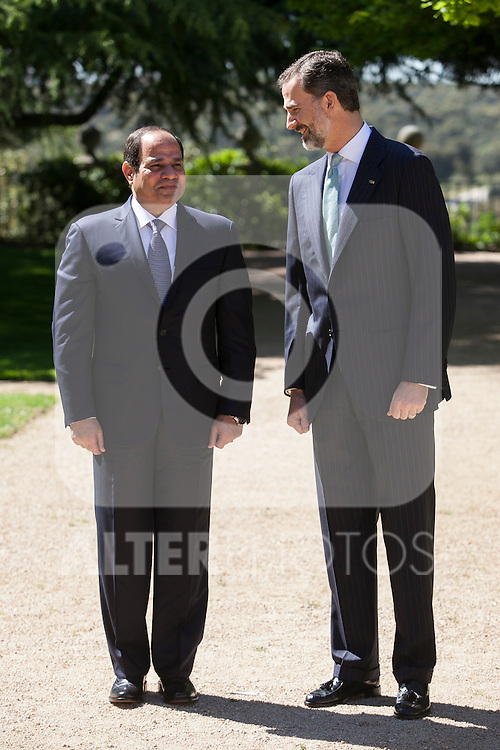 King Felipe VI of Spain (R) and Arab Republic of Egypt President Abdelfatah Al-Sisi during a Royal Audience at Zarzuela Palace in Madrid, Spain. April 30, 2015. (ALTERPHOTOS/Victor Blanco)