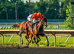 July 18, 2020: Horologist #11, ridden by Joe Bravo, wins the Molly Pitcher Stakes on Haskell Invitational Day at Monmouth Park Racecourse in Oceanport, New Jersey. Charles Toler/Eclipse Sportswire/CSM
