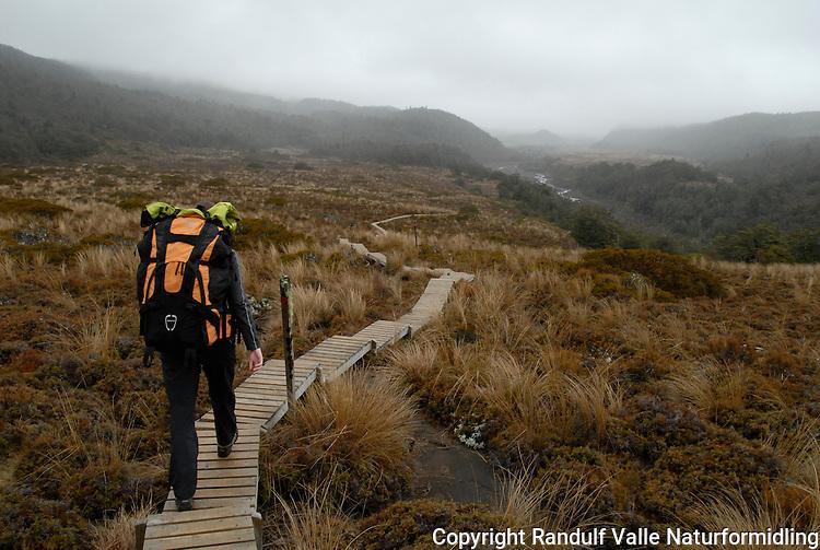 På tilrettelagt sti i Tongariro nasjonalpark ---- On well prepared tracks in Tongariro national park