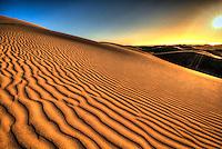 Oceano Dunes - Central Coast, CA
