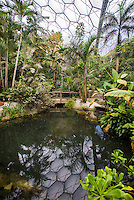 The Rainforest Biome at the Eden Project, St. Austell, Cornwall.