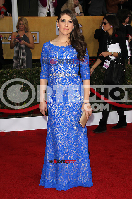 LOS ANGELES, CA - JANUARY 27: Miyam Bialik at The 19th Annual Screen Actors Guild Awards at the Los Angeles Shrine Exposition Center in Los Angeles, California. January 27, 2013. Credit: mpi27/MediaPunch Inc. /NortePhoto /NortePhoto