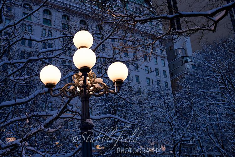 Street Lamp in New York City's Central Park.
