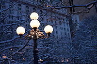 Street Lamp in New York City's Central Park.
