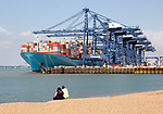 People sitting on beach as cranes load Edith Maersk container ship, Port of Felixstowe, Suffolk, England, UK