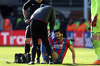 James Tomkins of Crystal Palace is treated before being substituted during Crystal Palace vs Tottenham Hotspur, Premier League Football at Selhurst Park on 25th February 2018