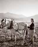 USA, California, Organic farmer standing with horse in field, Fort Jones (B&W)