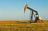 oil pump jack and canola field<br />