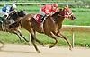 Play Eighteen winning at Delaware Park on 9/5/12
