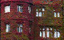 05/09/14 <br /> <br /> A stunning display of autumn colour on a virginia creeper  has grown up the walls and on to the roof of The Abbey Hotel Great Malvern, Worcestershire.<br /> <br /> All Rights Reserved - F Stop Press.  www.fstoppress.com. Tel: +44 (0)1335 300098