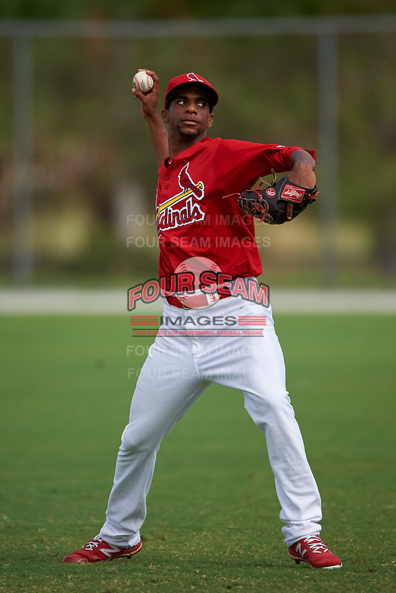 St. Louis Cardinals pitcher Ronnie Williams (13) during practice before a Minor League Spring Training game against the New York Mets on March 31, 2016 at Roger Dean Sports Complex in Jupiter, Florida.  (Mike Janes/Four Seam Images)