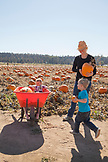 USA, Oregon, Bend, a young family chooses pumpkins at the annual pumpkin patch located in Terrebone near Smith Rock State Park
