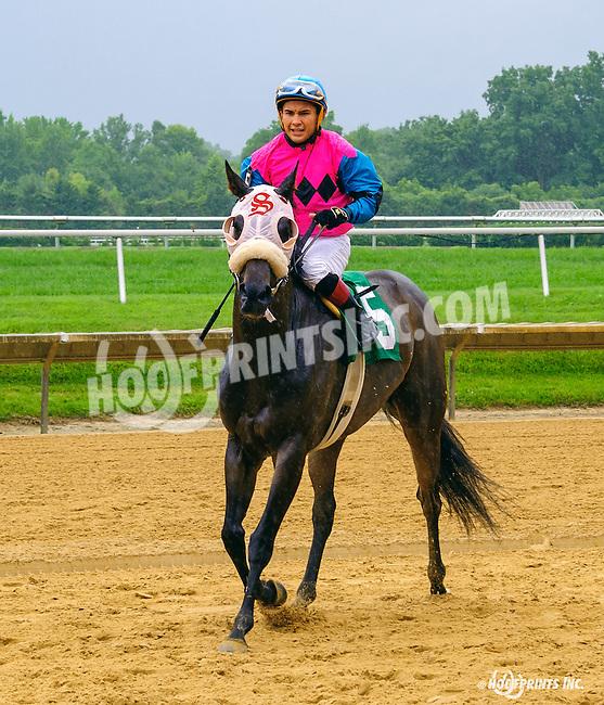 Ruby's Mine winning at Delaware Park on 7/13/16