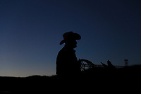 Riding horse.<br /> Silhouette of a cowboy with hat against light just before sunset with the sky blue intense, during rodeo in the ejido cuquiarachi. Cuquiarachic, belonging to the municipality of Fronteras, Sonora. Daily life and cowboy culture in the towns of northern Mexico. (Photo: LuisGutierrez / NortePhoto.com)<br /> Montar caballo.<br /> Silueta de un vaquero con sombrero a contra luz  justo antes del anochecer con el cielo de color azul intenso, durante rodeo en el ejido cuquiarachi. Cuquiarachic, perteneciente al municipio de Fronteras, Sonora. Vida cotidiana y cultura vaquera en los pueblos del norte de Mexico.  (Foto: LuisGutierrez / NortePhoto.com)