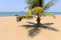 MALAWI, Salima, beach of Sunbird Livingstonia Beach Hotel at Malawi Lake