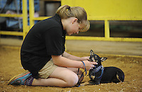 NWA Media/ANDY SHUPE - Juls Borkowski, 10, of Rogers, pets her dog, Pongo, as they wait to participate in the annual Youth Dog Show Saturday, Aug. 30, 2014, at the Washington County Fair in Fayetteville. The fair concluded Saturday.