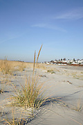 Steep Hill Beach  which is on the Crane Estate in Ipswich, Massachusetts USA , during the autumn months..Notes: Crane Estate was the 20th-century summer estate of Chicago industrialist Richard T. Crane