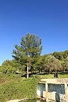 Israel, Upper Galilee, Ein Koves in Safed
