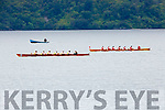 The Muckross RC crew overtake Fossa at the finish line to win the Minor Mens XI's at the Killarney Regatta on Sunday