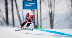 PyeongChang 10/3/2018 - Mollie Jepsen skis to the bronze in the women's standing downhill at the Jeongseon Alpine Centre during the 2018 Winter Paralympic Games in Pyeongchang, Korea. Photo: Dave Holland/Canadian Paralympic Committee