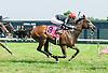 Gasparilla Inn winning at Delaware Park on 7/28/15