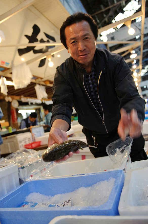 Toshinori Tsuboi, CEO of Otsubo Suisan fish wholesalers and fugu specialists, Tsukiji Fish Market, Tokyo, Japan, October 15 2009.