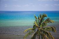 Olinda_PE, Brasil...Praia em Olinda, Pernambuco...The beach t in Olinda, Pernambuco.. .Fotos: JOAO MARCOS ROSA / NITRO