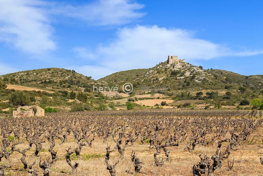 France, Aude (11), Tuchan, le château d'Aguilar et le vignoble AOC Fitou // France, Aude, Tuchan, Aguilar Castle and vineyard Fitou AOC