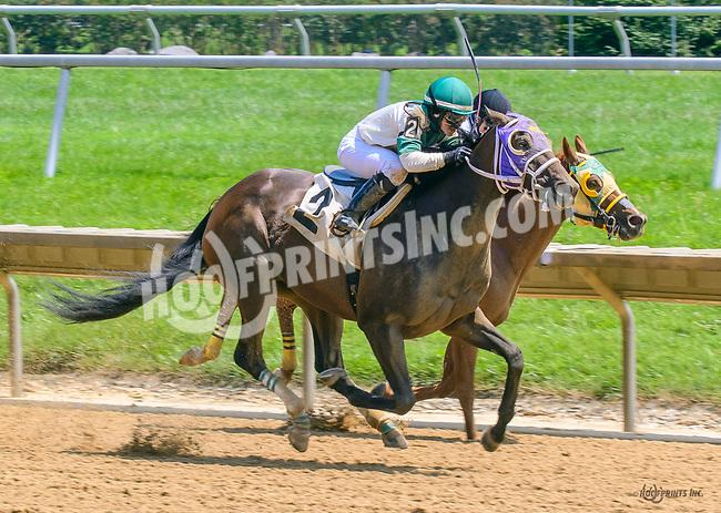 Tiz Showbiz winning at Delaware Park on 7/17/17