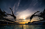 MESA, AZ - APRIL 25:  Swimmers dive into the water at the start of the Men's 200M Freestyle Finals during the Arena Grand Prix of Swimming on April 25, 2014 in Mesa, California.  (Photo by Donald Miralle for Sports Illustrated)