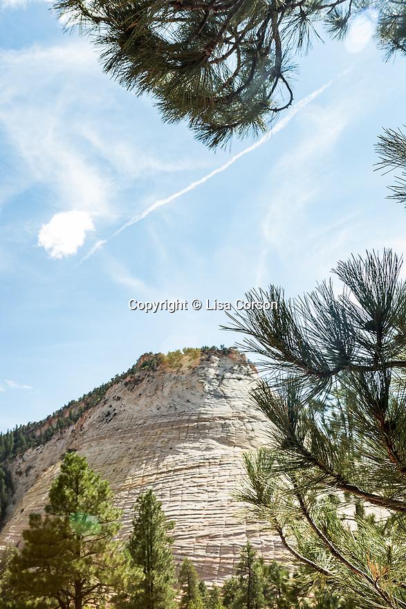 Zion National Park. Utah.