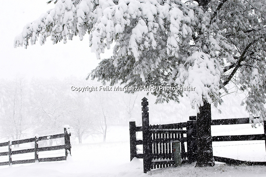 Waterford, VA in Loudoun County became a photographer's wonderland in late winter