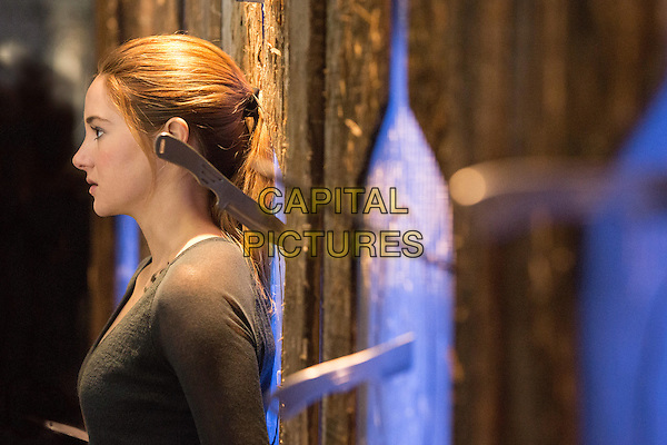 Shailene Woodley<br /> in Divergent (2014) <br /> *Filmstill - Editorial Use Only*<br /> CAP/NFS<br /> Image supplied by Capital Pictures