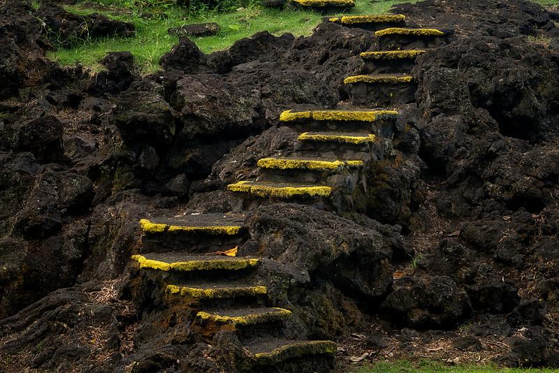 Moss on steps at  Carl Smith State Park, HJawaii, the big island.
